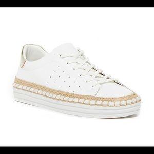 🥰 Sam Edelman Sneaker